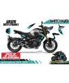 TEAM PETRONAS - YAMAHA MT-09 2017 - 2019